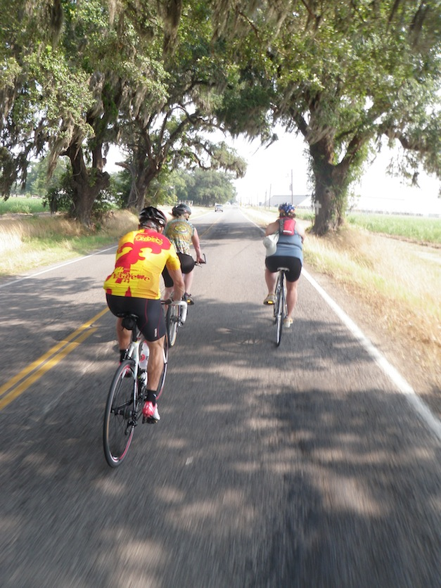 Cycle Zydeco rolls for four days through Cajun country.  (Photo: Tom Adkinson)